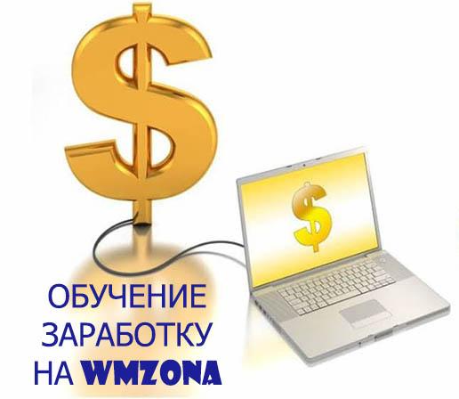 WMzona - легкий способ заработка в интернете