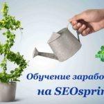 Заработок в интернете на кликах без вложений с Seosprint