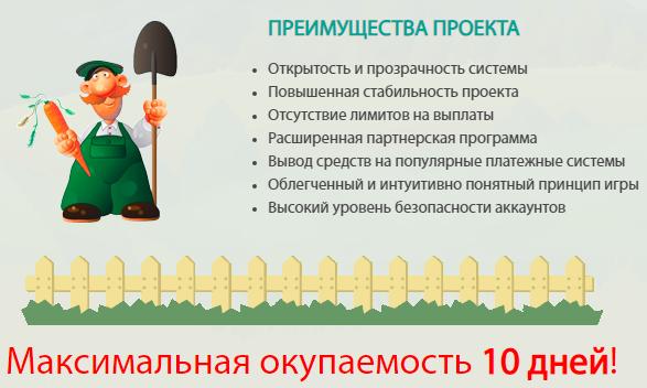 Преимущества проекта Онлайн-Огород